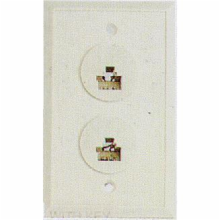 6 Position/6 Conductor Dual Telephone Jack Wall Plate